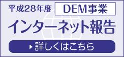 平成28年度DEM事業インターネット報告